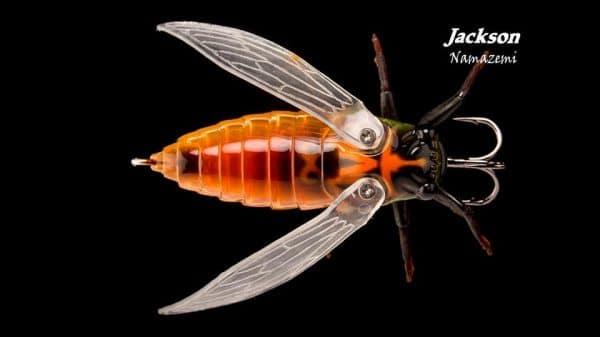 Jackson Namazemi site 4 Web