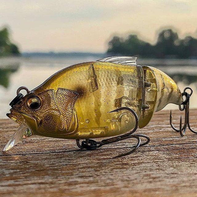 Crankys megabass vibration vatalion swimbait pêche fishing