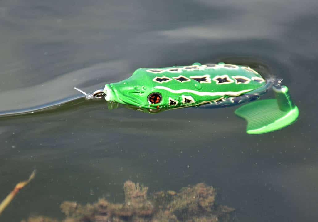 crankys leurre surface sakura bublle frog pêche fishing