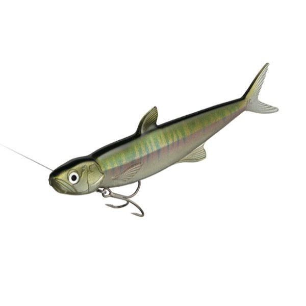 crankys leurre soft swimbait last ace 168 evergreen pêche fishing