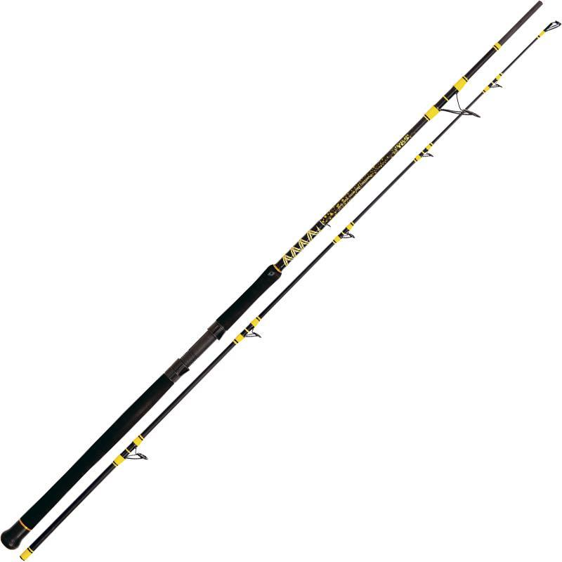 crankys canne silure black cat passion pro dx boat spin pêche fishing